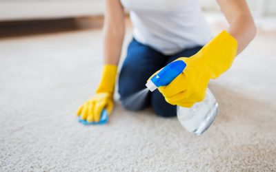 Is it worth getting my carpets cleaned by a professional?