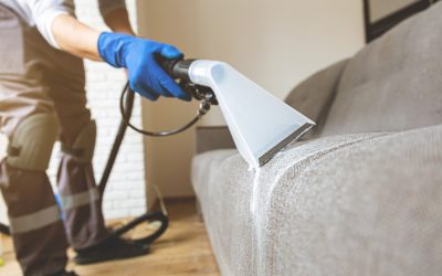 Hints, Secrets And Tips Of Hiring A Carpet Cleaner