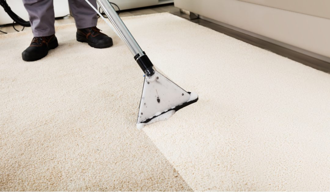 Here Are 2 Myths About Carpet Cleaning Completely Debunked
