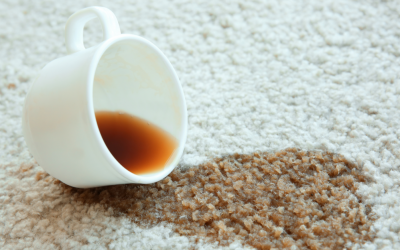 6 Facts About Carpet Cleaning